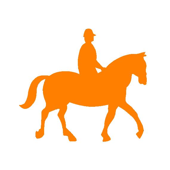 Inclui Passeio a cavalo.